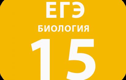 15. Выбор предложений