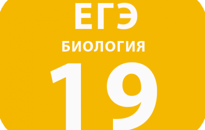 19. Установление последовательности