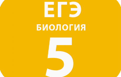 5. Установление соответствия