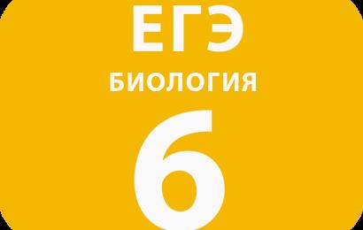 6. Задача