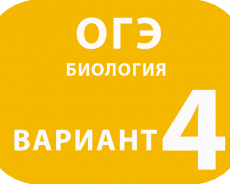 ОГЭ Биология вариант №4