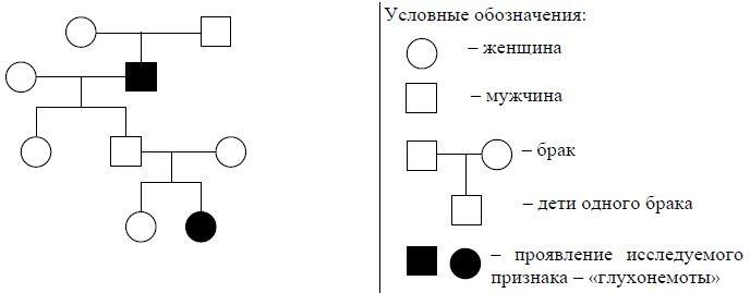 vpr-bilogiya-7