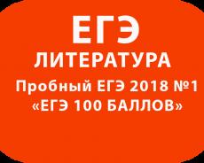 Пробный ЕГЭ 2018 по литературе №1 с ответами и решениями