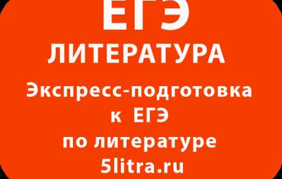 Экспресс-подготовка к ЕГЭ по литературе 5litra.ru