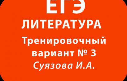 ЕГЭ по литературе Тренировочный вариант № 3 с ответами