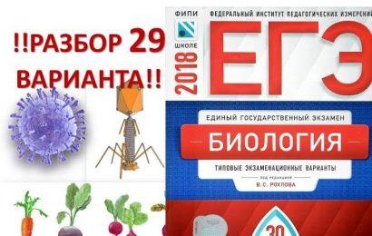 Разбор 29 варианта ЕГЭ по биологии Рохлов 2018