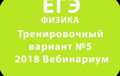 ЕГЭ ФИЗИКА 2018 Тренировочный вариант №5 Вебинариум