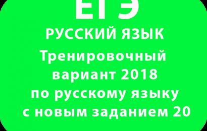 Тренировочный вариант ЕГЭ по русскому языку с новым заданием 20