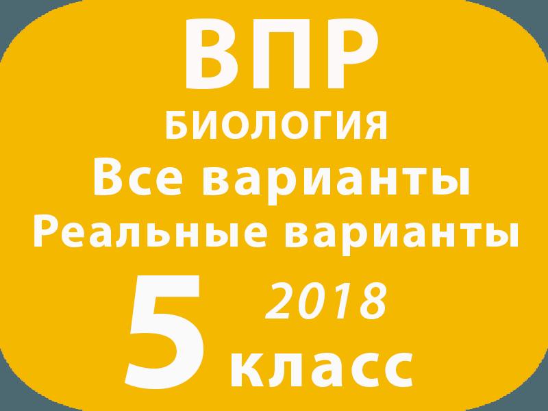 решу впр русский язык вариант 5