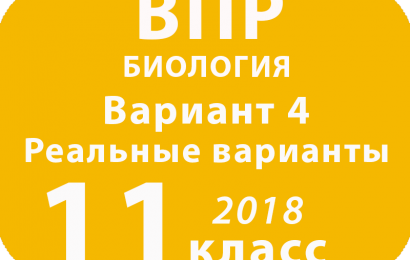 ВПР 2018 г. Биология. 11 класс. Вариант 4