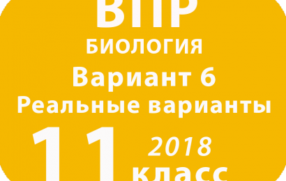 ВПР 2018 г. Биология. 11 класс. Вариант 6 с ответами