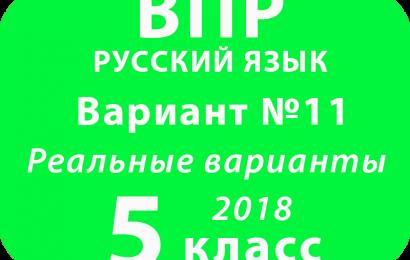 ВПР 2018 Русский язык. 5 класс. Вариант 11 с ответами