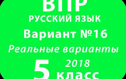 ВПР 2018 Русский язык. 5 класс. Вариант 16 с ответами