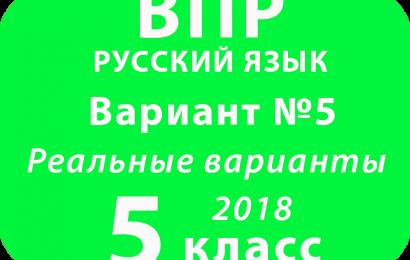 ВПР 2018 Русский язык. 5 класс. Вариант 5 с ответами