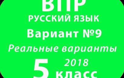 ВПР 2018 Русский язык. 5 класс. Вариант 9 с ответами